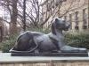 Hofstra University Lions, Female 6' Bronze